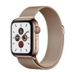 Apple Watch Series 5 LTE 40mm Gold Steel w. Gold Milanese Loop - Gold Steel (MWWV2)
